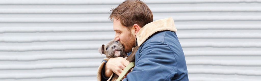 Tom Hardy ayudo a unos cachorros abandonados a encontrar casa-NATION
