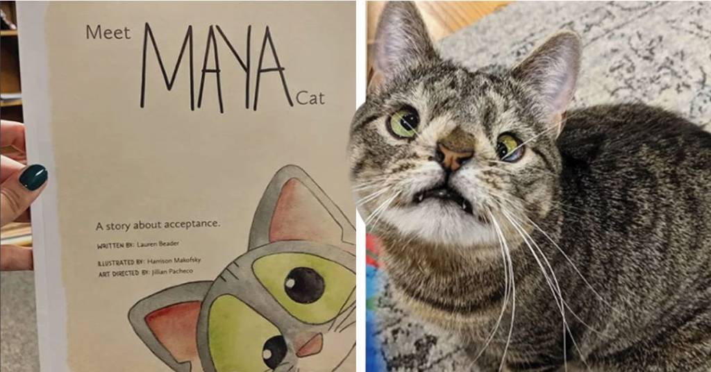 Gatita con síndrome de Down tiene su propio libro y es adorable-NATION
